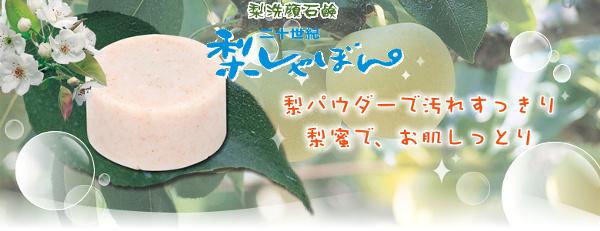nashisyabon01.jpg