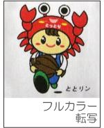 sanyo_apa_3_1.jpg
