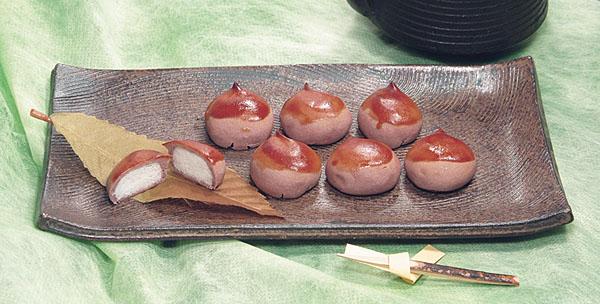 shibaguri600.jpg
