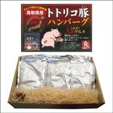 トトリコ豚ハンバーグ